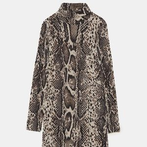🍁🍂 Cute Fall Look 🍂🍁 Zara Python Print Dress